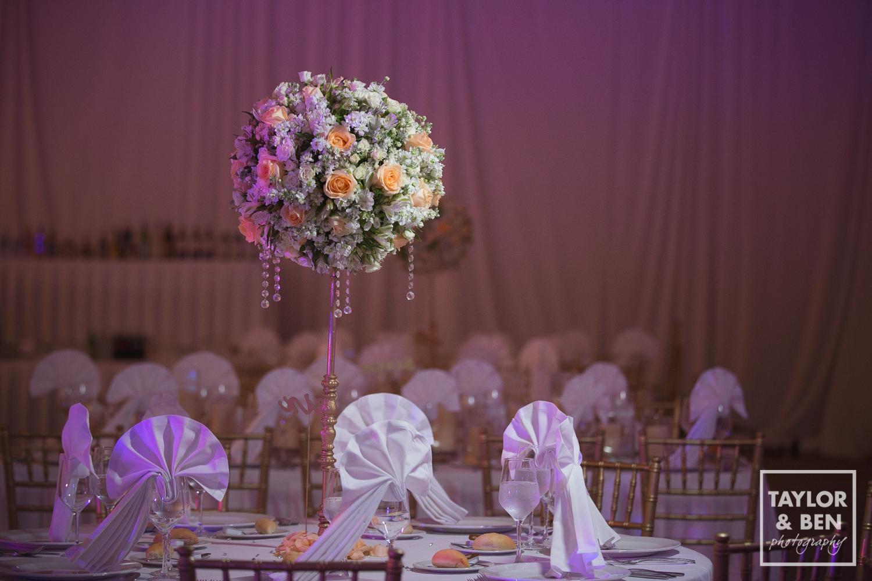 travel-photographer-dc-wedding-007